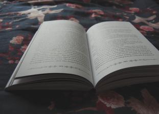 Современные романы, признанные во всем мире, идеально подходящие для чтения в канун самого пугающего праздника.