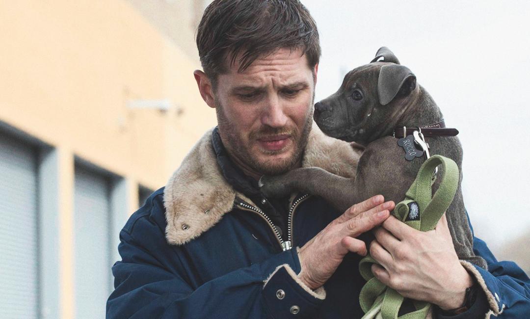Том Харди с собакой