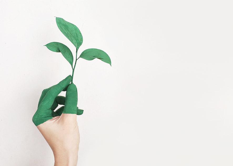 Простые перемены, которые позволят тебе снизить количество отходов.